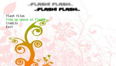 flashiflash.jpg